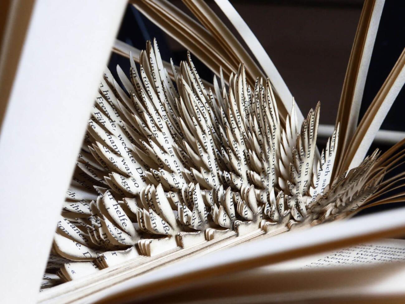 Lasercut Buch - Vogel Detail von Robin Hanhart