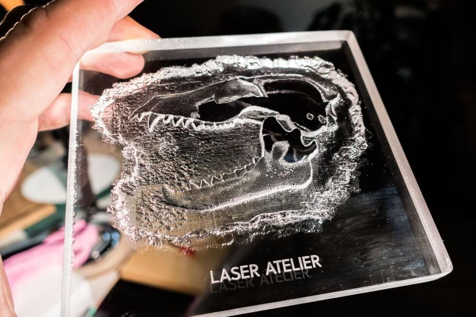 Laserengraving of bird skull as 3D relief in Acryl/PMMA by Laser Atelier